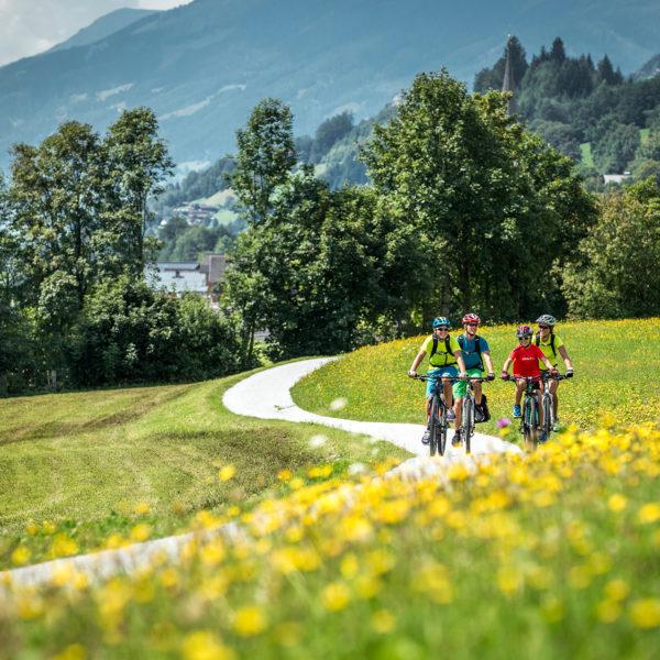 Radfahrer auf Wiesenweg
